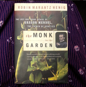Monk in the Garden