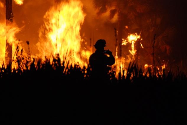 Wildfires 1_633.jpg